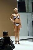 Lingrie expo jesieni Moskwa pokaz mody Obraz Stock