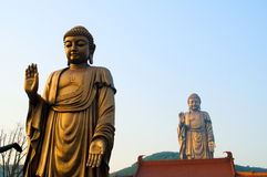Lingshan Grand Buddha Stock Image
