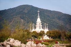 Lingshan sceniskt område Manfei Dragon Tower för stor Buddha Royaltyfri Fotografi