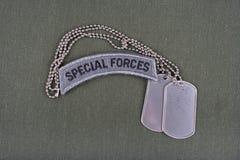 Linguetta delle forze speciali dell'ESERCITO AMERICANO con la medaglietta per cani sull'uniforme di verde verde oliva Fotografia Stock