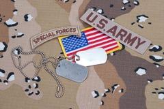 Linguetta delle forze speciali dell'ESERCITO AMERICANO con le medagliette per cani in bianco Immagine Stock Libera da Diritti