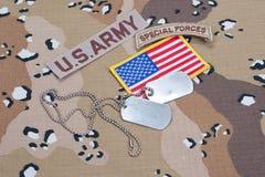 Linguetta delle forze speciali dell'ESERCITO AMERICANO con le medagliette per cani in bianco Immagini Stock Libere da Diritti