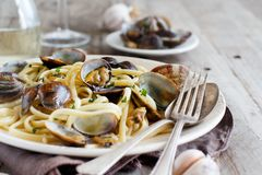 Linguini with clams. Top view - Traditional italian seafood pasta royalty free stock image