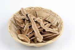 Lingzhi Mushroom, Lingzhi (Ganoderma lucidum (Fr.) Karst) Royalty Free Stock Image