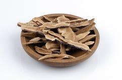 Lingzhi Mushroom, Lingzhi (Ganoderma lucidum (Fr.) Karst) Stock Photography