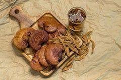 Lingzhi pieczarka Zdjęcie Royalty Free