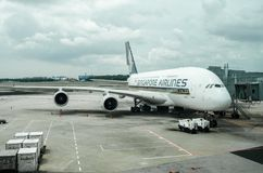 Linha aérea de Singapura no terminal de aeroporto 1 de Changi Imagens de Stock