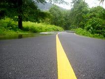 Linha amarela Fotografia de Stock