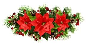 Linha arranjo do Natal com galhos, cones, e poinsetti do pinho Fotografia de Stock Royalty Free