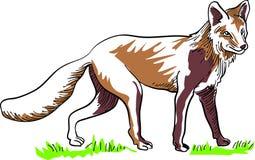 Linha arte do Fox ilustração do vetor