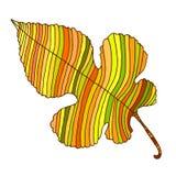 Linha bonita, colorida, folha do outono, estilo dos desenhos animados, o Imagem de Stock Royalty Free