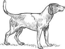 Linha cão da arte ilustração royalty free