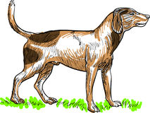 Linha cão ereto da arte ilustração do vetor