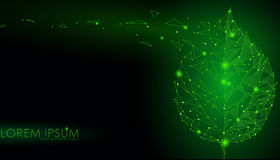 Linha conectada folha do ponto dos pontos do triângulo Conceito da natureza de Eco na obscuridade - o fundo verde ilumina o illus Imagens de Stock