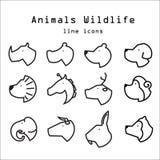 A linha ícones dos animais selvagens dos animais ajustou 1 Foto de Stock Royalty Free