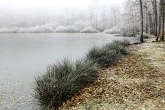 Linha costeira congelada do lago na névoa Imagem de Stock
