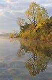 Linha costeira da mola Fotos de Stock