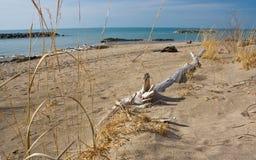 Linha costeira de Erie de lago Imagem de Stock Royalty Free