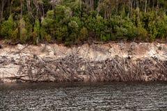 Linha costeira de lago Burbury Tasmânia Fotografia de Stock Royalty Free