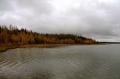 Linha costeira de Laurie Lake com árvores coloridas foto de stock