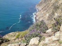 Linha costeira de Pch Imagens de Stock