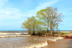 Linha costeira do Lago Ontário Foto de Stock Royalty Free