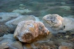 Linha costeira do Mar Morto Fotos de Stock Royalty Free