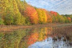 Linha costeira do outono Imagens de Stock Royalty Free