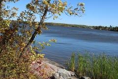 Linha costeira do rio Imagens de Stock Royalty Free