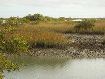 Linha costeira do rio de Matanzas fotos de stock