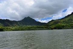 Linha costeira litoral bonita em Havaí com as ondas que deixam de funcionar lentamente na costa fotos de stock