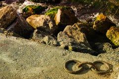 Linha costeira rochosa Imagens de Stock