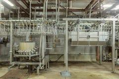 Linha da fábrica da galinha Imagem de Stock Royalty Free