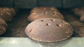 Linha da fabricação do pão Correia transportadora da fábrica do pão Transformação de produtos alimentares padaria filme