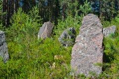 linha da segunda guerra mundial, região do Anti-tanque de Leninegrado, Rússia fotos de stock