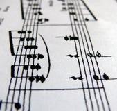 Linha das notas Imagens de Stock