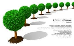 Linha de árvores Imagem de Stock Royalty Free