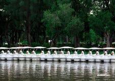 A linha de barco de pá deu forma ao pato no parque Foto de Stock