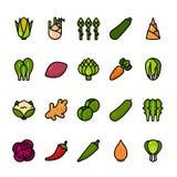 Linha de cor grupo do ícone dos vegetais Ícones perfeitos do pixel ilustração royalty free