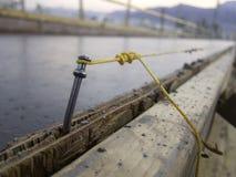 Linha de corda concreto do prego Foto de Stock