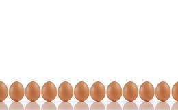 Linha de ovos fotos de stock royalty free