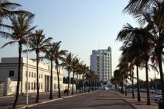 Linha de palmeiras matrizes de Marine Parade Outside Natal Command Foto de Stock