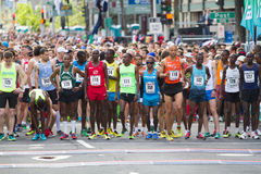 Linha de partida lilás da corrida do divertimento 12k de Bloomsday 2014 Imagem de Stock