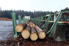 Linha de processamento de madeira foto de stock