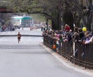 Linha de ventiladores Cheering Fotos de Stock Royalty Free