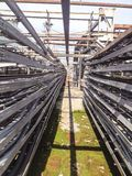 Linha do cabo Foto de Stock