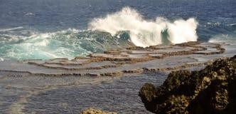 Linha do custo de Tonga Fotografia de Stock