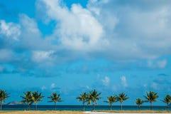 Linha do horizonte com as palmas no céu azul foto de stock