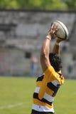 Linha do rugby para fora Imagem de Stock Royalty Free