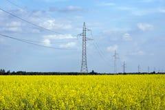 Linha eléctrica Pólo Imagem de Stock